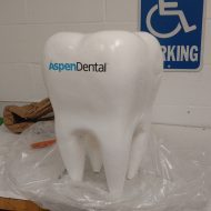 Promotional Products - Logo's Tooth Display for a dentist